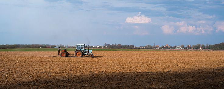 Denuncia infortunio agricoltura